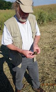 Prof. Dr. Kord Ernstson